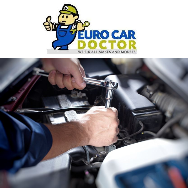 Euro Car Doctor Pinraise Business With Heart Hall Of Fame